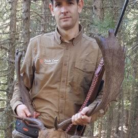 Gamo representativo conseguido en subasta de caza